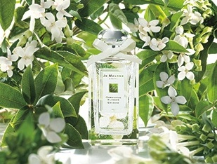 osmanthus jo malone may 12